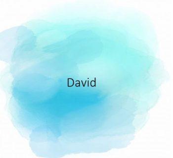 David-350x320